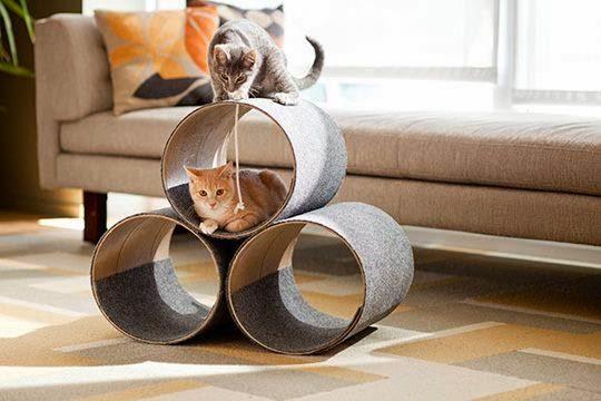 brinquedo para gatos arquitrecos via pinterest